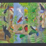 SOLOMON ISLANDS 2005 PASARI - Timbre straine, Nestampilat