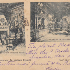 SOUVENIR DE SINAIA INTERIOR DIN CASTELUL PELES CLASICA CIRCULATA - Carte Postala Muntenia pana la 1904, Printata