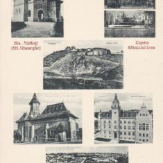 SUCEAVA 6 IMAGINI DIFERITE - Carte Postala Bucovina dupa 1918, Necirculata, Printata