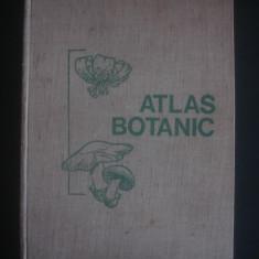 ATLAS BOTANIC {1980, format 34 x 25 cm}