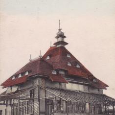 CONSTANTA BAILE DE LA MAMAIA PAVILIONUL EDITURA LIBRARIEI D. NICOLAESCU C-TA - Carte Postala Dobrogea dupa 1918, Necirculata, Printata
