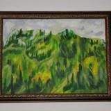 Piatra Craiului - Pictor roman, An: 2010, Natura, Ulei, Altul
