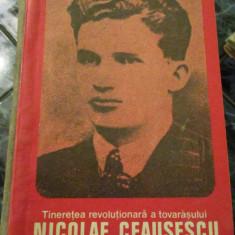 Tineretea revolutionara a tovarasului Nicolae Ceausescu - Carte veche