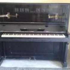 Pianina Altele C.M.Schroder