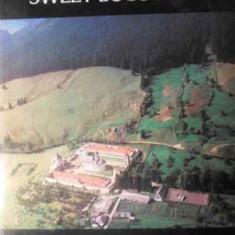 Sweet Bucovina - Ion Miclea, 389055 - Album Arta