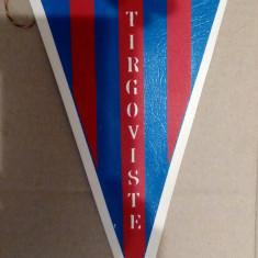 FANION FOTBAL - CS TARGOVISTE