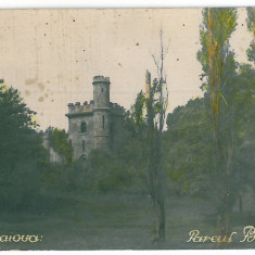3016 - CRAIOVA, Bibescu Park - old postcard, real PHOTO - unused, Necirculata, Fotografie