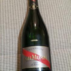 Sampanie vintage G.H. Mumm - millésime 2009