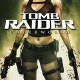 Tomb Raider Underworld Nintendo Wii