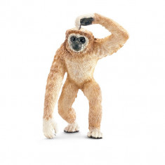 Figurina Animal Gibon - Figurina Animale Schleich