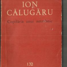 [132] COPILARIA UNUI NETREBNIC - ION CALUGARU - Carte poezie
