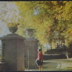 CHISINAU - In parcul Puskin anii 60., Circulata, Fotografie