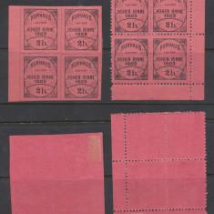 RFL 1903 HOHE RINNE Posta Locala Paltinis 2 heller dantelat si ndt in bloc de 4 - Timbre Romania, Nestampilat