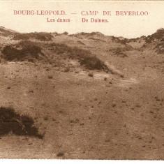 WW1 CAMP DE BEVERLO BELGIA DUNELE DE PE CAMPUL DE INSTRUCTIE, Necirculata, Printata