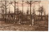 WW1 CAMP DE BEVERLO  BELGIA CRUCEA ROSIE CENTRU DE INSTRUIRE A BRANCARDIERILOR, Necirculata, Printata