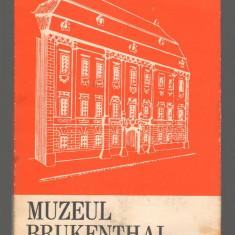 C6667 MUZEUL BRUKENTHAL - Carte Monografie
