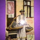 Vanzator de Pui - Pui de gaina! - Carte Postala Muntenia 1904-1918, Circulata, Fotografie
