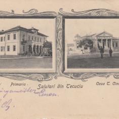 TECUCI SALUTARI DIN TECUCIU PRIMARIA CASA T. CINCU CLASICA ED.J.E.F.HOROVITZ - Carte Postala Moldova pana la 1904, Necirculata, Printata