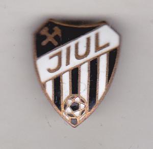 bnk ins Insigna Jiul Petrosani
