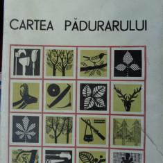 Cartea padurarului an 1967/713pagini/ cartonata - Carti Agronomie