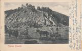 CETATEA NEAMTU, CIRCULATA, STAMPILA 904, Printata