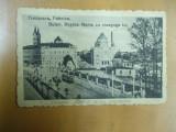 Timisoara Fabrica Bd. Regina Maria cu sinagoga israelita 1919 Temesvar, Necirculata, Printata
