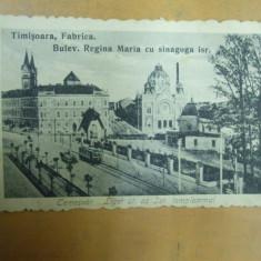 Timisoara Fabrica Bd. Regina Maria cu sinagoga israelita 1919 Temesvar - Carte Postala Banat 1904-1918, Necirculata, Printata