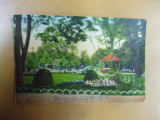 Timisoara Parcul Eminescu Temesvar Stadtpark, Necirculata, Printata