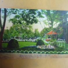 Timisoara Parcul Eminescu Temesvar Stadtpark - Carte Postala Banat 1904-1918, Necirculata, Printata