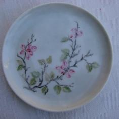 Frumoasa farfurioara din portelan pictata manual cu motive florale, Decorative