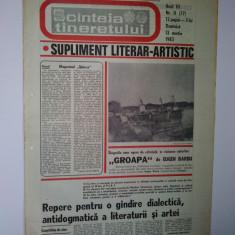Ziar - supliment literar artistic SCANTEIA TINERETULUI - 13 martie 1983
