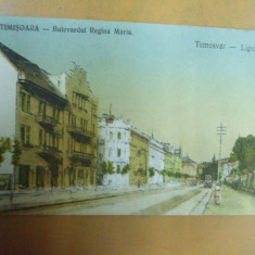 Timisoara Bulevardul Regina Maria Temesvar liget - ut - Carte Postala Banat 1904-1918, Necirculata, Printata
