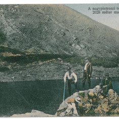3255 - Maramures, BORSA, PIETROSU RODNEI - old postcard - used - 1917 - Carte Postala Maramures 1904-1918, Circulata, Printata
