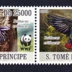 SAO TOME 2009 WWF SPECII PROTEJATE PAPAGALI - Timbre straine, Nestampilat