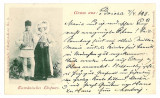 3364 - ETHNIC, Boita, Sibiu, Litho - old postcard - used - 1898