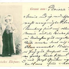 3364 - L i t h o, Sibiu, Boita, ETHNIC - old postcard - used - 1898 - Carte Postala Transilvania pana la 1904, Circulata, Printata