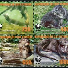 COASTA DE FILDES 2006 WWF SPECII PROTEJATE VIDRA - Timbre straine, Nestampilat