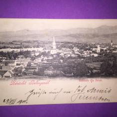 Beius - Vedere Generala - Carte Postala Transilvania 1904-1918, Circulata, Fotografie