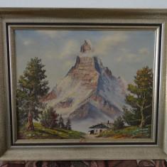 Tablou Munte inzapezit-Ulei pe panza- 50x60 cm, Peisaje, Altul