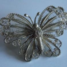 Brosa argint fluture in filigran -113