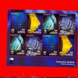 ST-167=MICRONEZIA 2014-WWF-Animale marine-pesti-Minicoala cu 2 serii MNH, 90 c - Timbre straine, Nestampilat