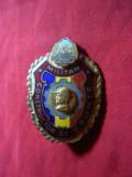 Insigna - Constructor de Frunte Militar , metal si email ,h= 4,7 cm - F.Rara !