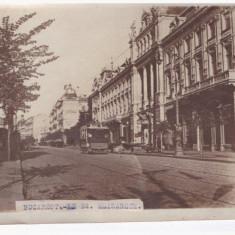 Foto originala Bucuresti, Bulevardul Elisabeta - Harta Europei