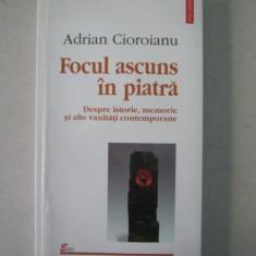 e3 Adrian Cioroianu - Focul ascuns in piatra (Editura Polirom , 2002)