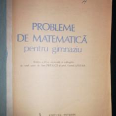 I. Petrica, Probleme de matematica pentru gimnaziu
