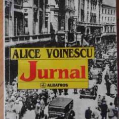 Jurnal - Alice Voinescu, 529864 - Biografie