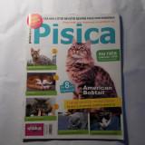 Lot 4 reviste PISICA, anul 2008, stare foarte buna