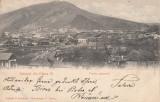 MOLDOVA   NEAMT   SALUTARI DIN PIATRA NEAMT, VEDERE GENERALA, CLASICA  CIRC.1905, Circulata, Printata