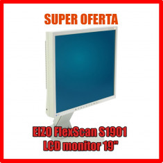 Monitor EIZO FlexScan S1901 - LCD monitor - 19