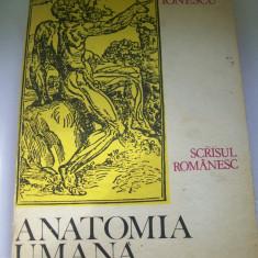 ANATOMIA UMANA IDEI,FAPTE,EVOLUTIE VOL,1 MIHAI IONESCU